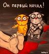 Просмотр темы - Советы заводчиков о продаже щенков