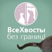 Помощь бездомным животным. Проект ВсеХвосты.ru